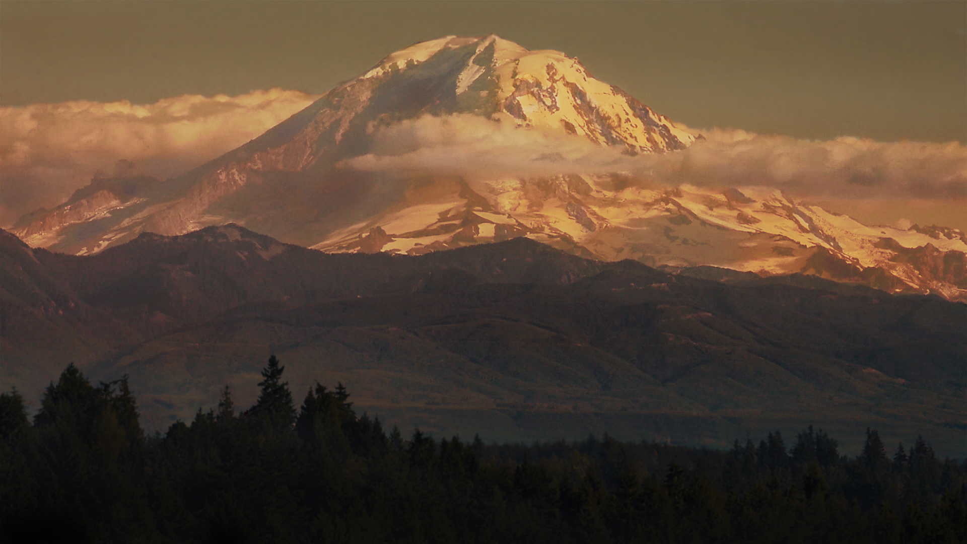 Photo of Mount Rainier at sunset