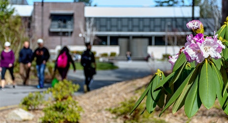 Photo of pink flowers in bloom on the Green River College campus with students walking in the background