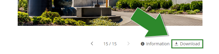 Cropped screenshot of the Green River College photo library photo page, with a large green arrow pointing to the