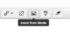 image showing the insert media button in the CMS editor